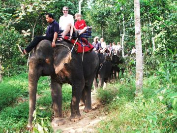 Full day White water Rafting and Elephant retreat